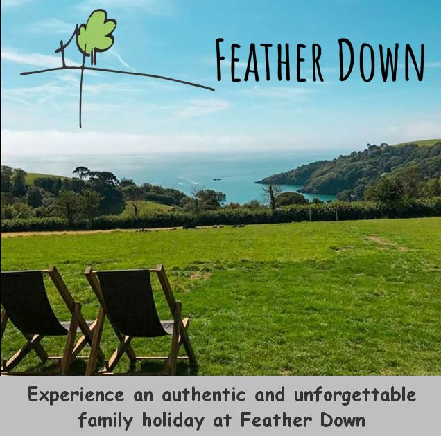 Feather Down banner