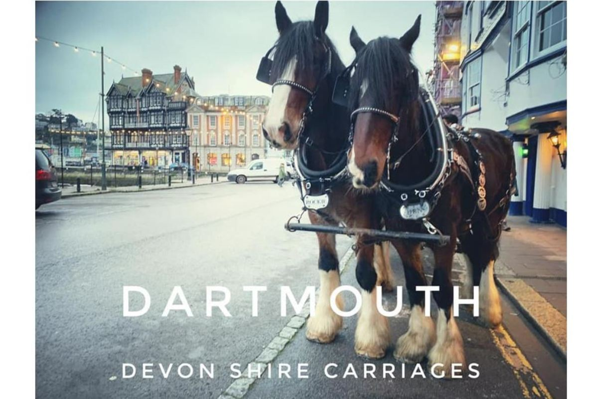 Devon Shire Carriages