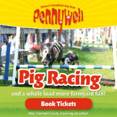 Pennywell Farm Pig racing